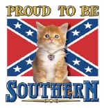 37166 Proud To Be Southern.jpg (72180 bytes)